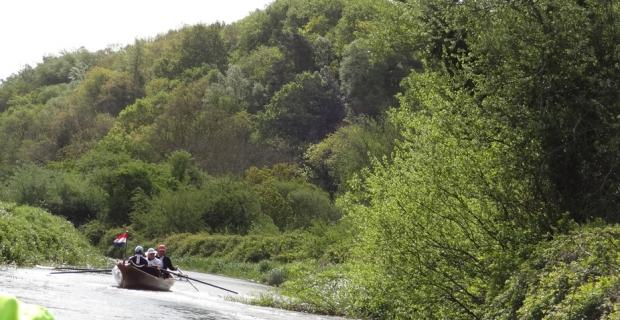 Vijftig tinten groen: roeien in Ierland